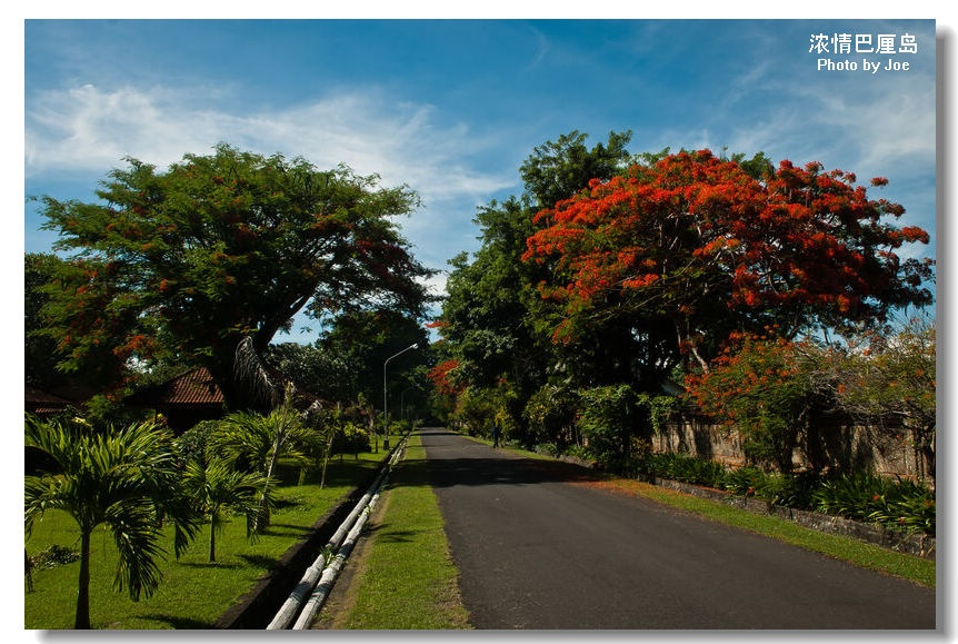浓情巴厘岛之一:美景回放