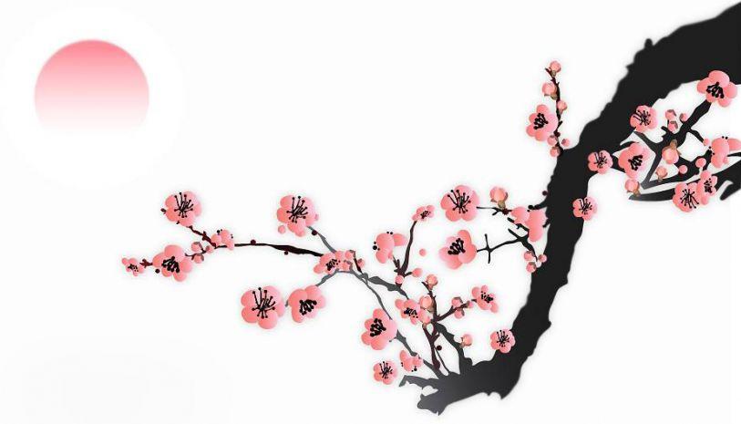 """看到梅花我最先想到的便是王安石写的诗:""""墙角数枝梅,凌图片"""