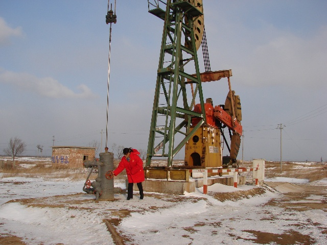 2008年的第一场雪 - 中国石油书画摄影