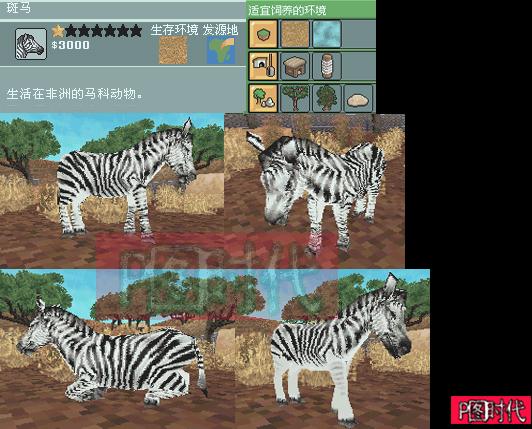 nds动物园大亨2图片攻略