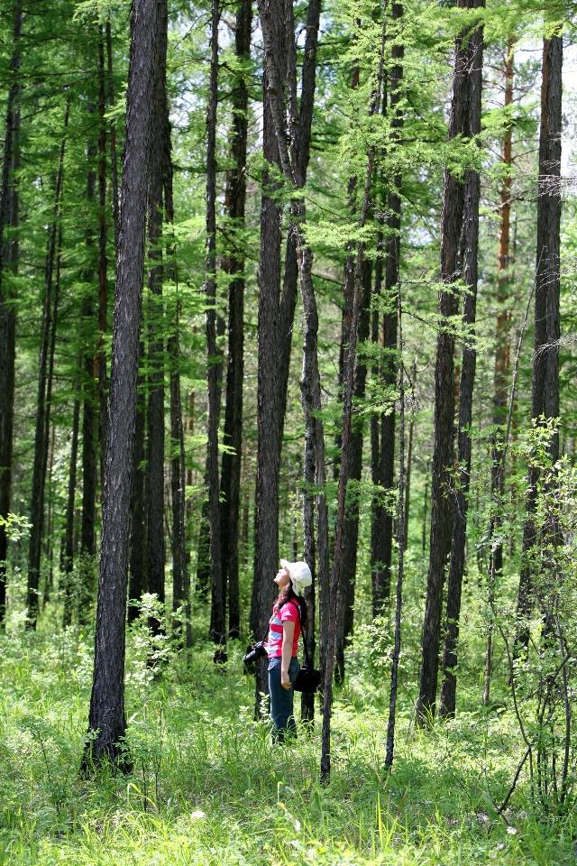 保护区内原始森林广阔,野生动物资源丰富,是东北最大的湿地保护区.