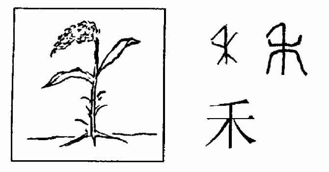 长藤树叶简笔画
