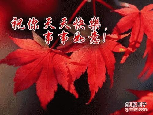 形容秋天的美好景象 风景秋天的美好景象 描写秋天丰收的景象图片
