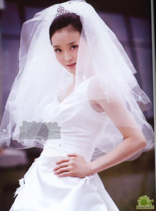 王艳老公结婚照图片大全 王艳和老公王志才结婚照