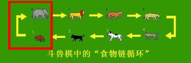 """动物的力量得到制衡,形成""""食物链循环&rdquo"""