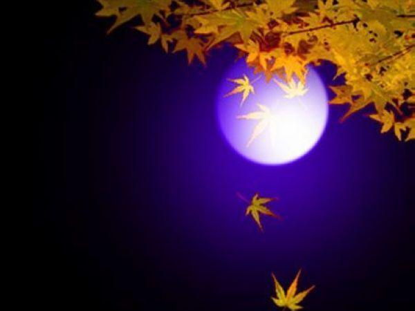 仲秋说月(二)——月亮的遐想