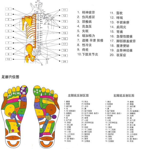 刮痧疗法是中国最古老的民间疗法之一,可以用来刮痧的器具很多:一枚铜钱、一只汤匙甚至一片磨钝了的竹板,现在常用的是水牛角、玉石、砭石。经过长期的实践证明,这其中又以砭石刮痧效果最好。因为砭石的远红外、微磁、超声共振等能量远超于水牛角、玉石。而且美容的超声波能量在人体可承受的范围之内,适量的良性的超声波作用于人体内可以产生以下的作用:    一、按摩作用。即超声波可对人体的细胞产生一定的压力,使细胞出现微小的运动,从而改变病变细胞的状态,达到治病的目的;   二、热作用。即人体吸收超声波的能量后,皮肤的血液循